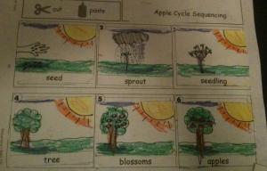 first grade work